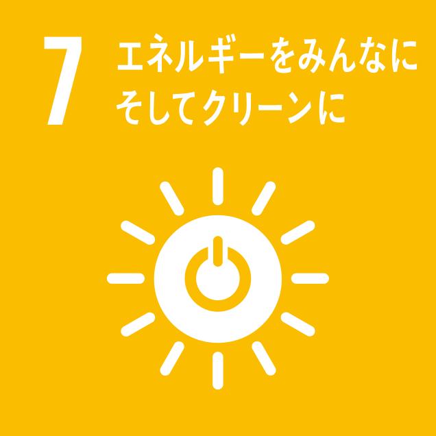 sdg_logo_7