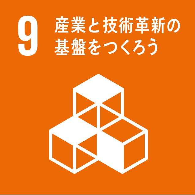 sdg_logo_9