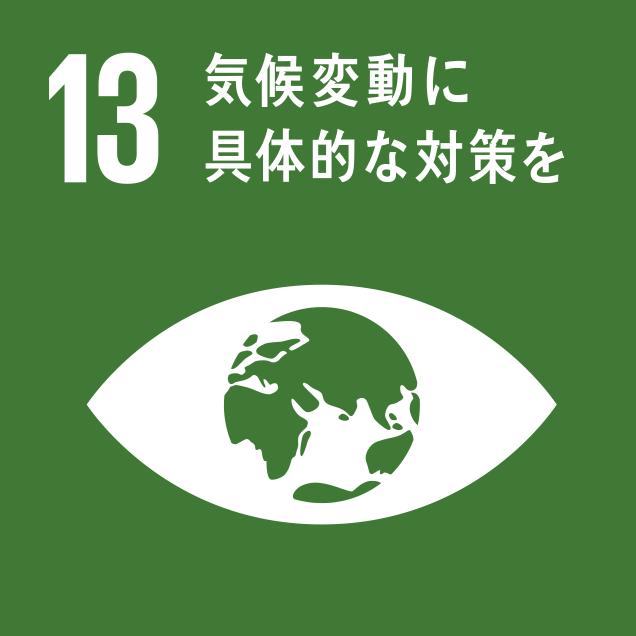 sdg_logo_13