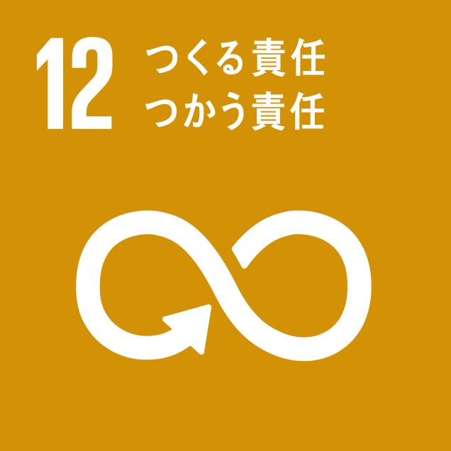 sdg_logo_12